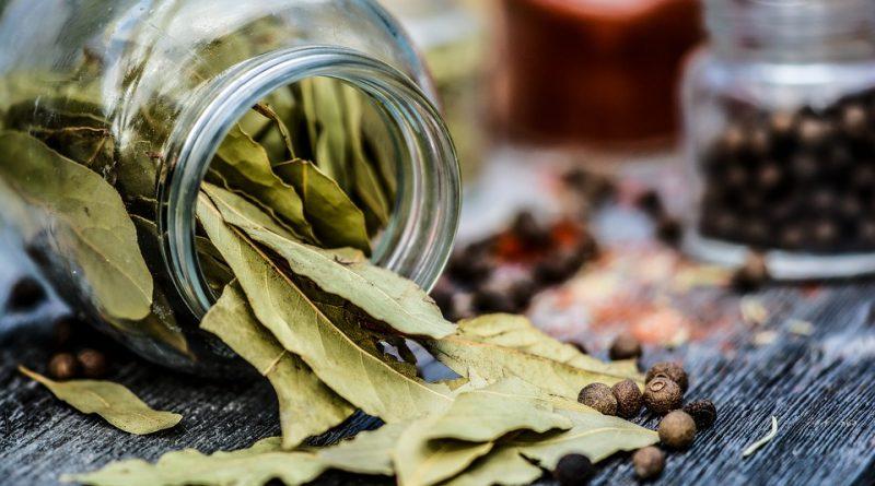 Odvar z bobkových listů se vám může hodit. Podpoří vaše zdraví