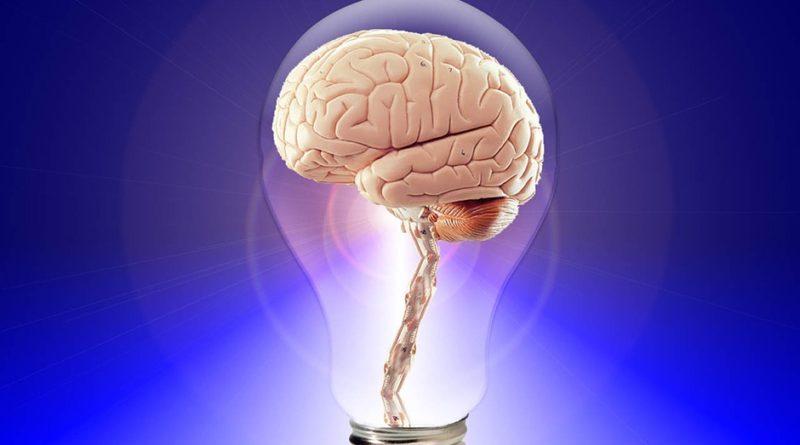 Podpořte svůj mozek a díky pár tipům ho uzdravte